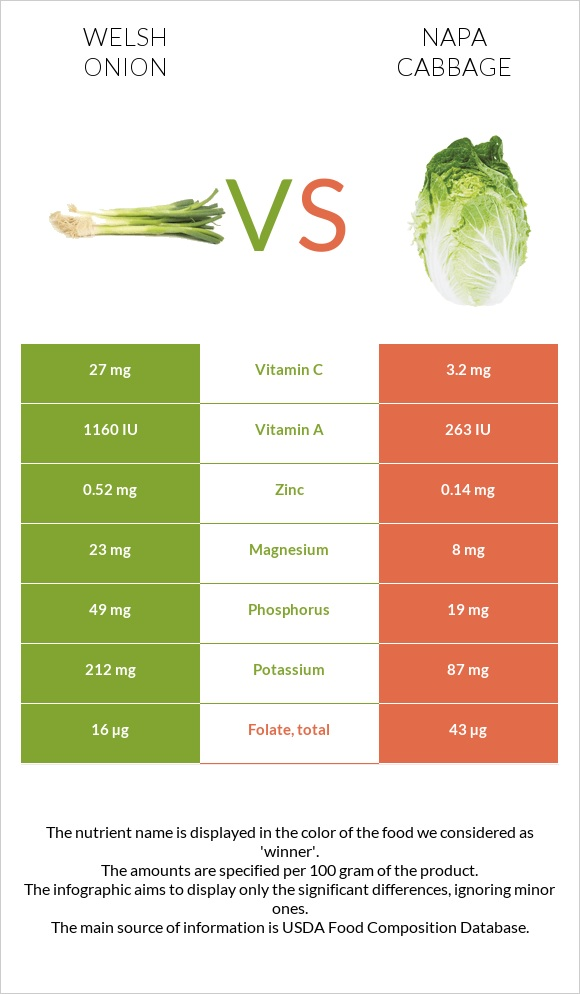 Welsh onion vs Napa cabbage infographic