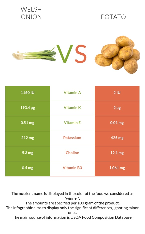Welsh onion vs Potato infographic