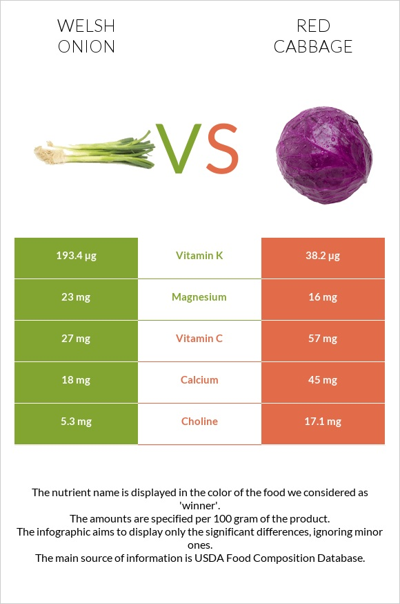 Welsh onion vs Red cabbage infographic