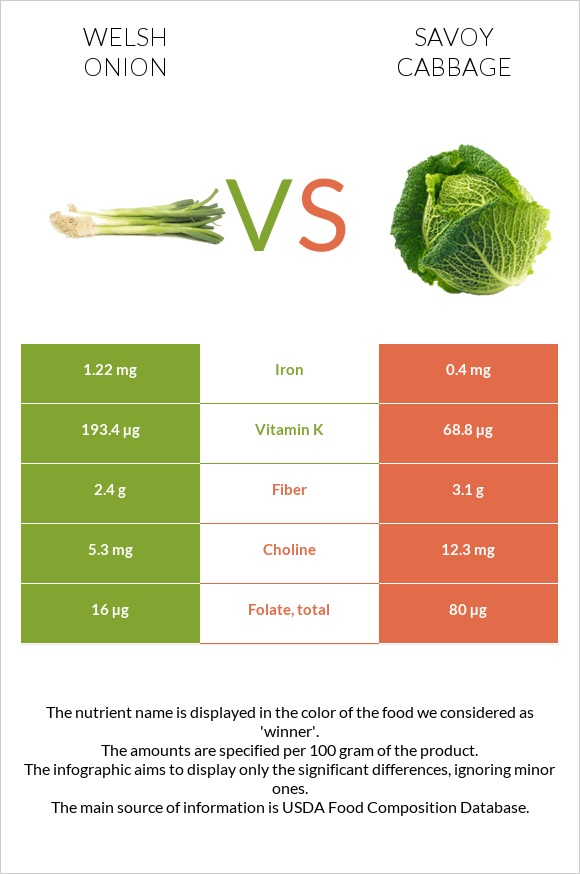 Welsh onion vs Savoy cabbage infographic