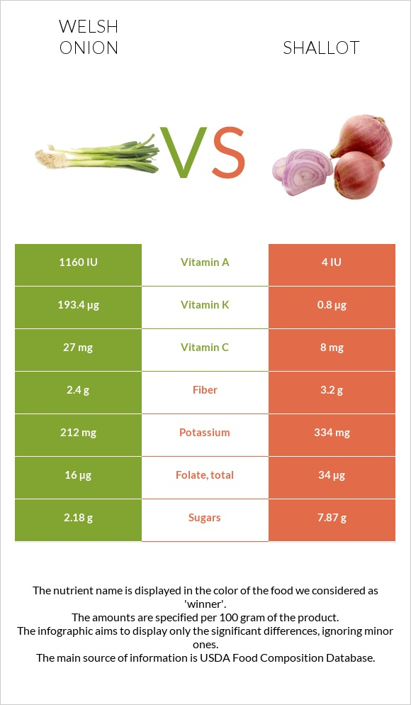 Welsh onion vs Shallot infographic