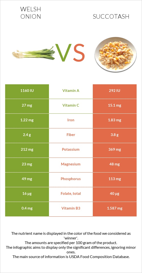 Welsh onion vs Succotash infographic