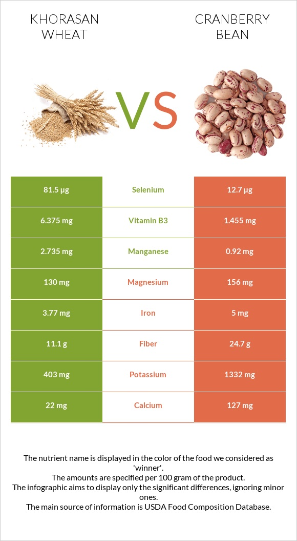 Khorasan wheat vs Cranberry bean infographic