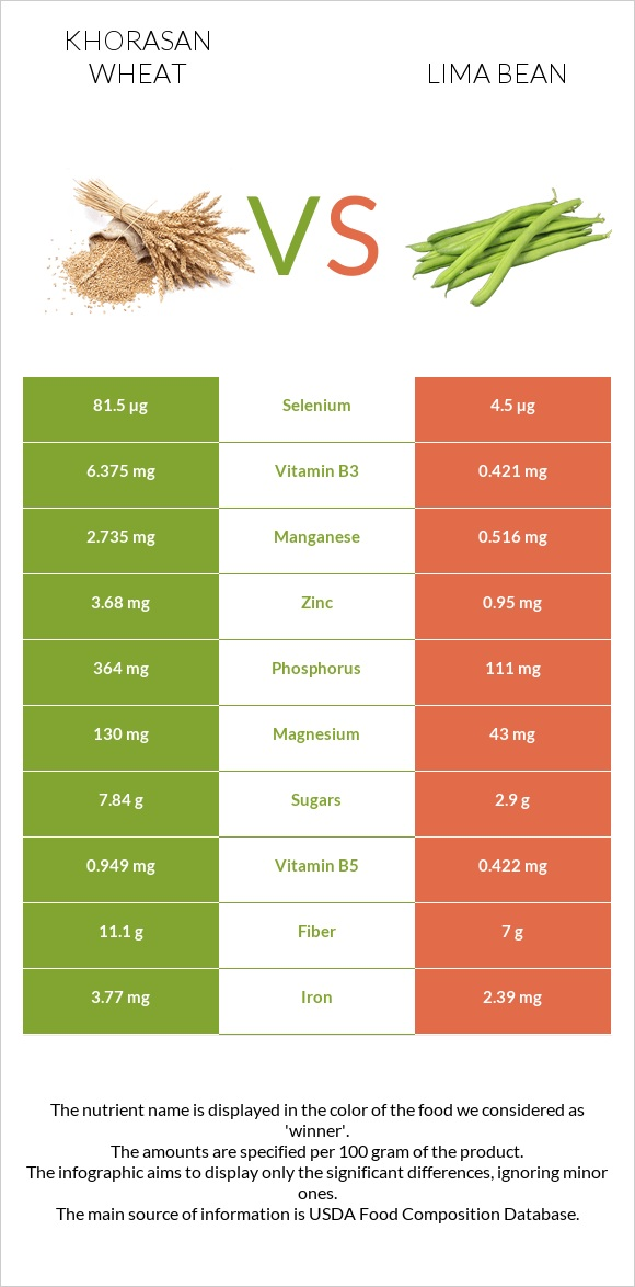Khorasan wheat vs Lima bean infographic