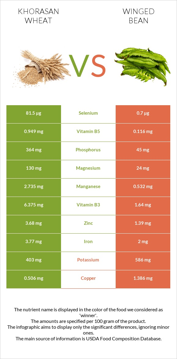 Khorasan wheat vs Winged bean infographic