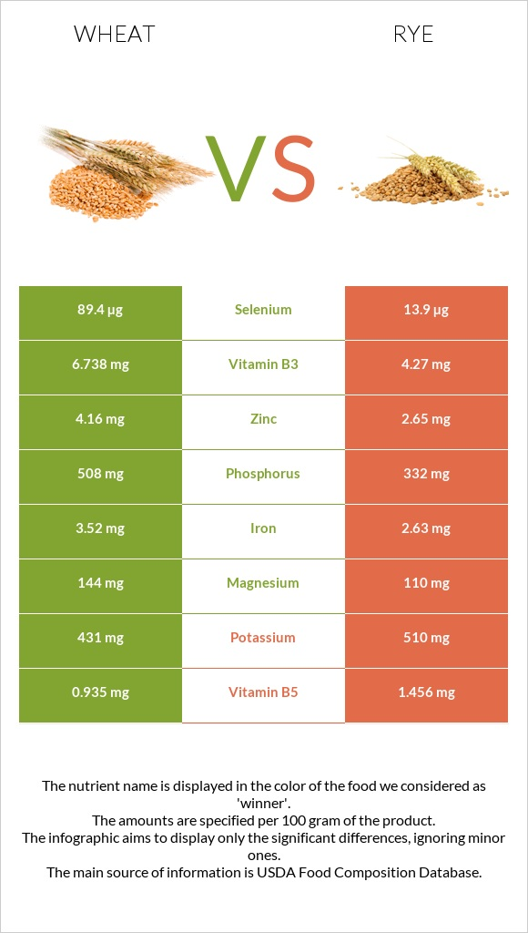 Wheat vs Rye infographic