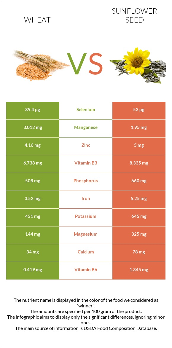 Wheat vs Sunflower seed infographic