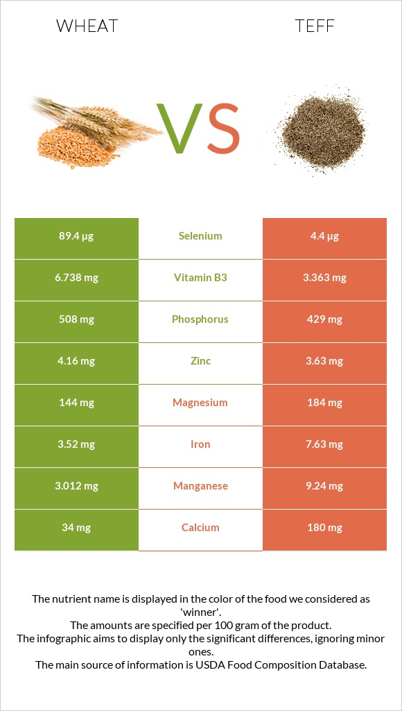 Wheat vs Teff infographic