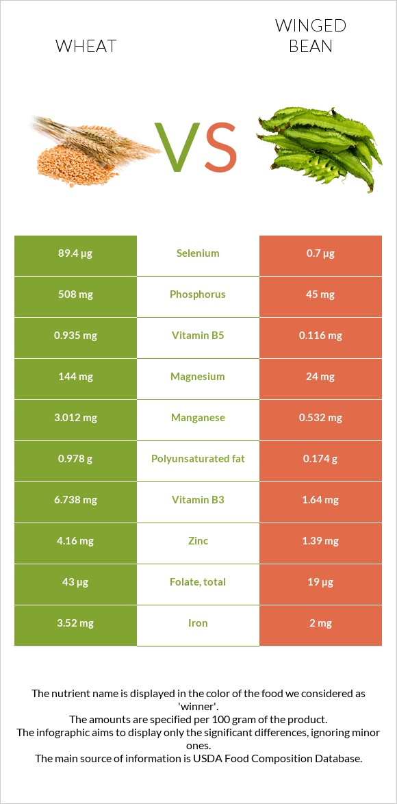 Wheat vs Winged bean infographic