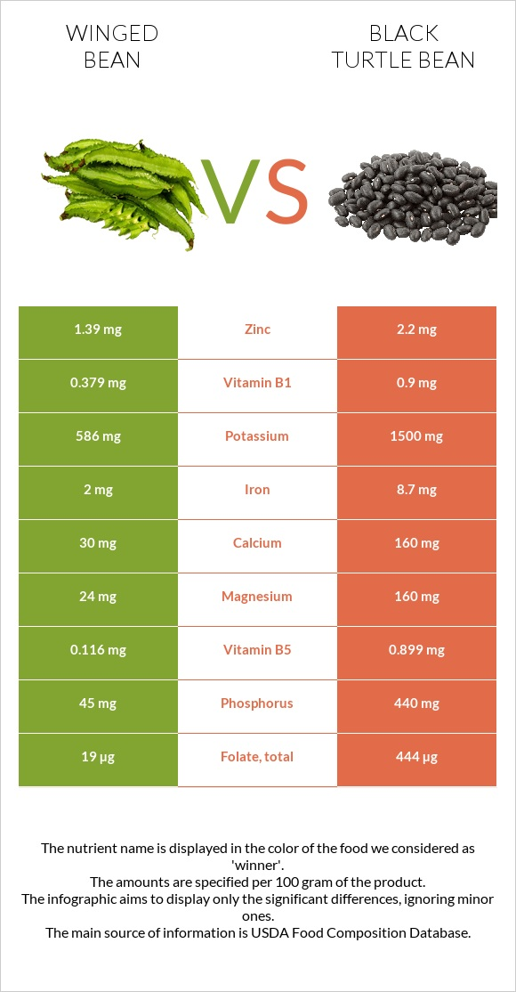 Winged bean vs Black turtle bean infographic