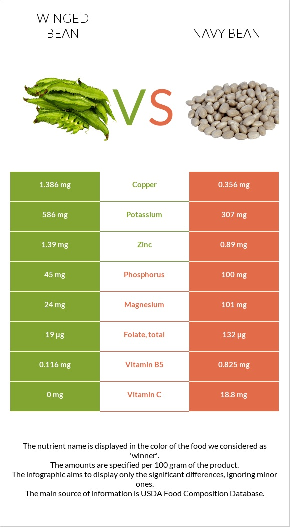 Winged bean vs Navy bean infographic