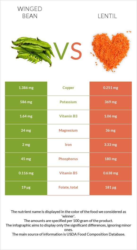 Winged bean vs Lentil infographic