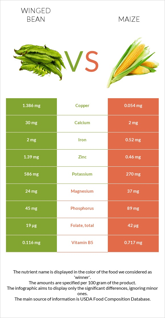 Winged bean vs Maize infographic