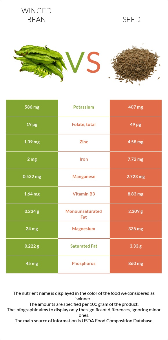 Winged bean vs Seed infographic