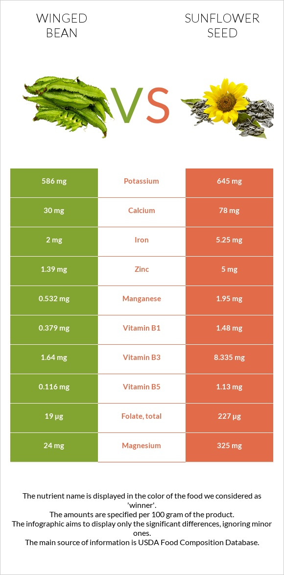 Winged bean vs Sunflower seed infographic