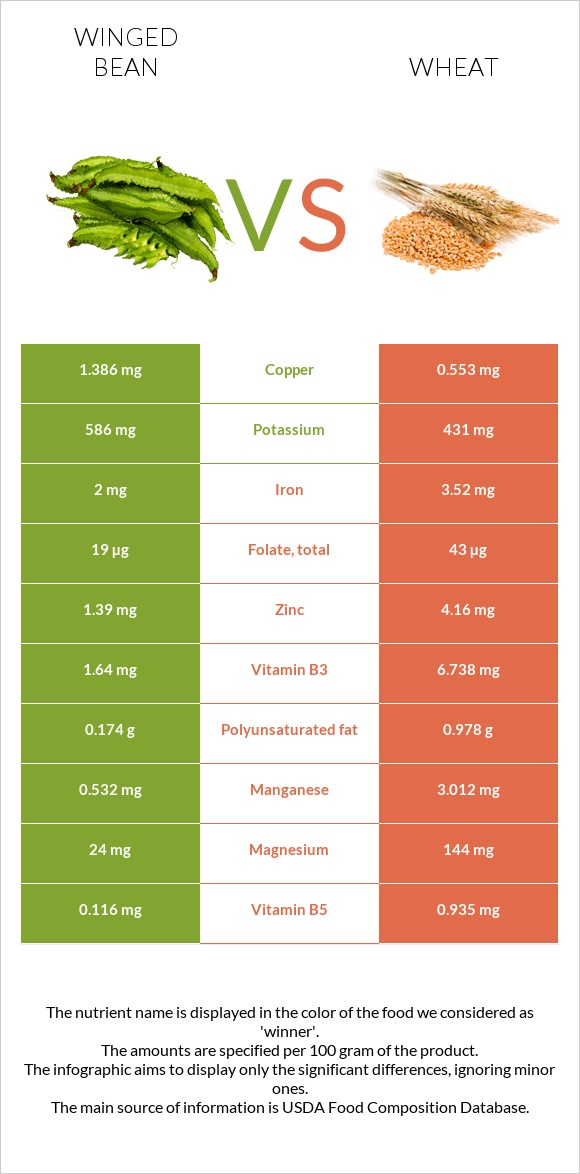 Winged bean vs Wheat infographic