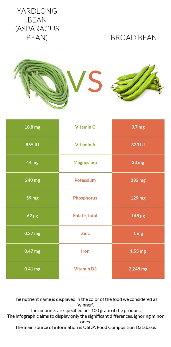 Yardlong bean vs Broad bean infographic