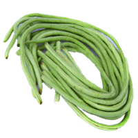 Yardlong bean (Asparagus bean)