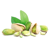Pistachio vs Walnut - In-Depth Nutrition Comparison